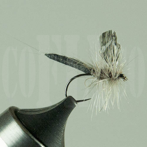 Adams Dun Wingz Sci-Fly