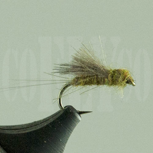 Blue Wing Olive Tailwater Dun Harrop