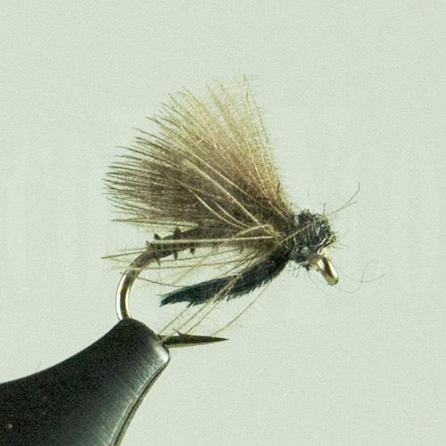 Caddis Emerger Brown Biot Harrop