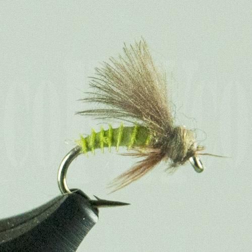 Caddis Emerger Green Biot Harrop