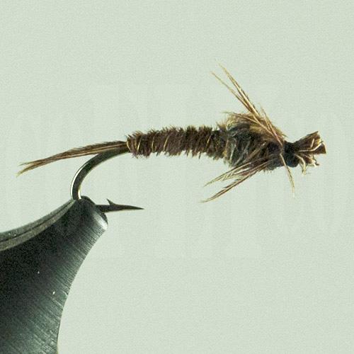 Turkey Tail Nymph Brown Harrop