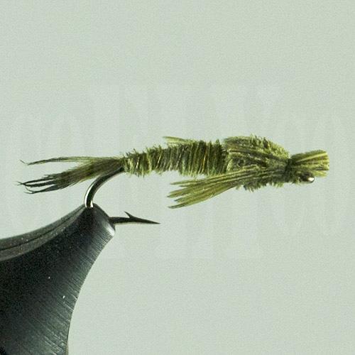 Turkey Tail Nymph Olive Harrop