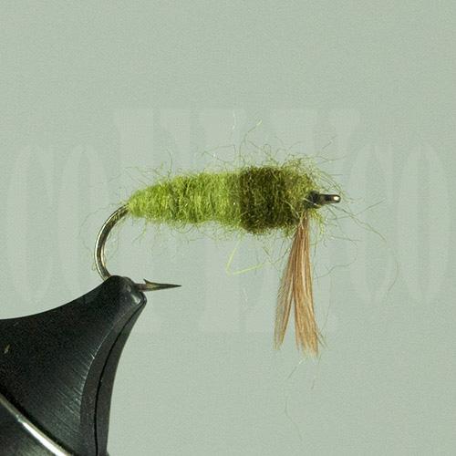 Caddis Larvae Olive Skykomish