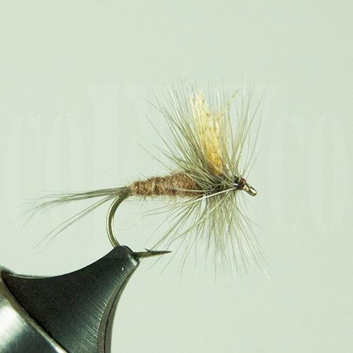Grey Hendrickson Skykomish