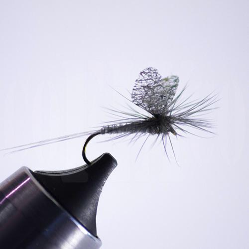 Callibaetis Cutwing Parachute